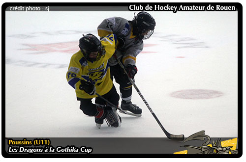 Exaggerate. think Amateur de hockey can defined?